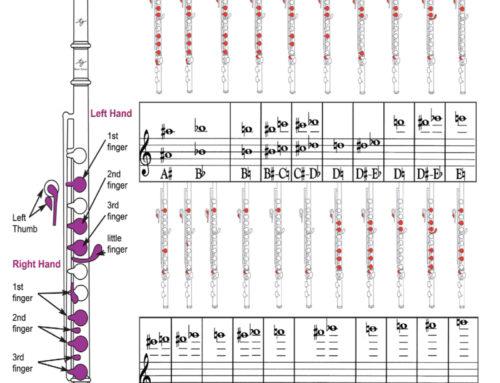 Doigtés de la flute